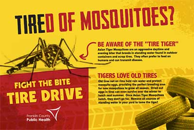Mosquito tire drive postcard image